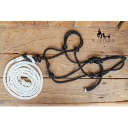 LICOL CORDE+LONGE SMALL HORSE DENNIS MORELAND